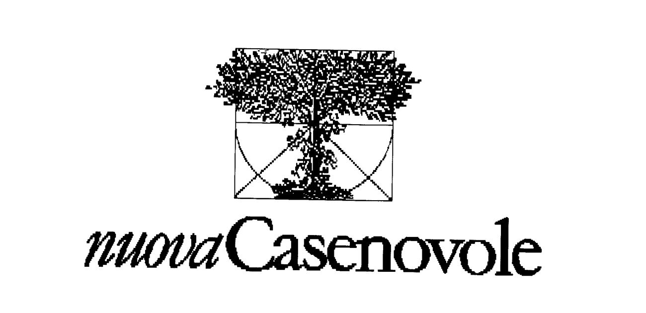 logo_casenovole